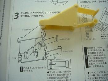 rhinoceros 004.JPG